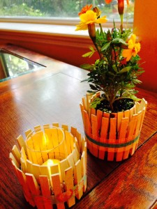 Clothes pin Planter/Candle Holder