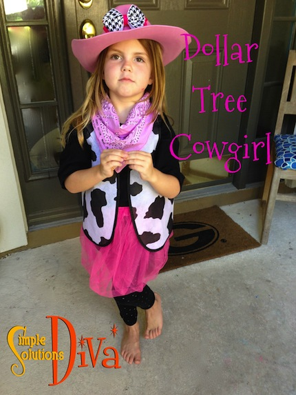 Dollar Tree Cowgirl by SimpleSolutionsDiva.com.
