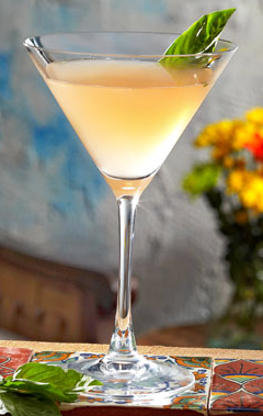 Ruby Red Grapefruit Martini Photo From TommyBahama.com.
