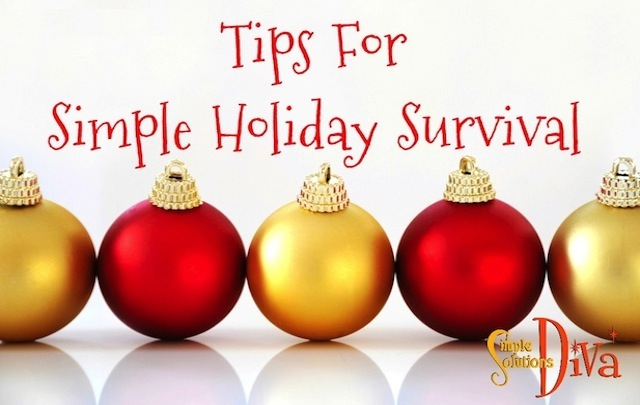 Slider SImple Holiday Survival Tips