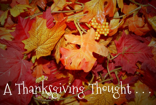 THanksgiving Thought photo