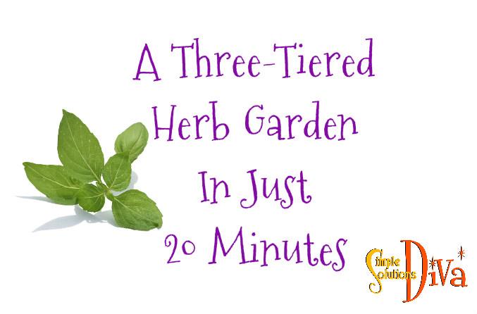 SSD Herb Garden